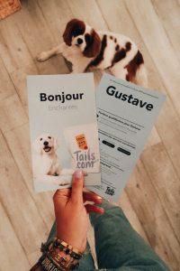 tails.com croquette chien parisgrenoble